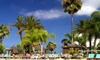 пляж пальмы песок
