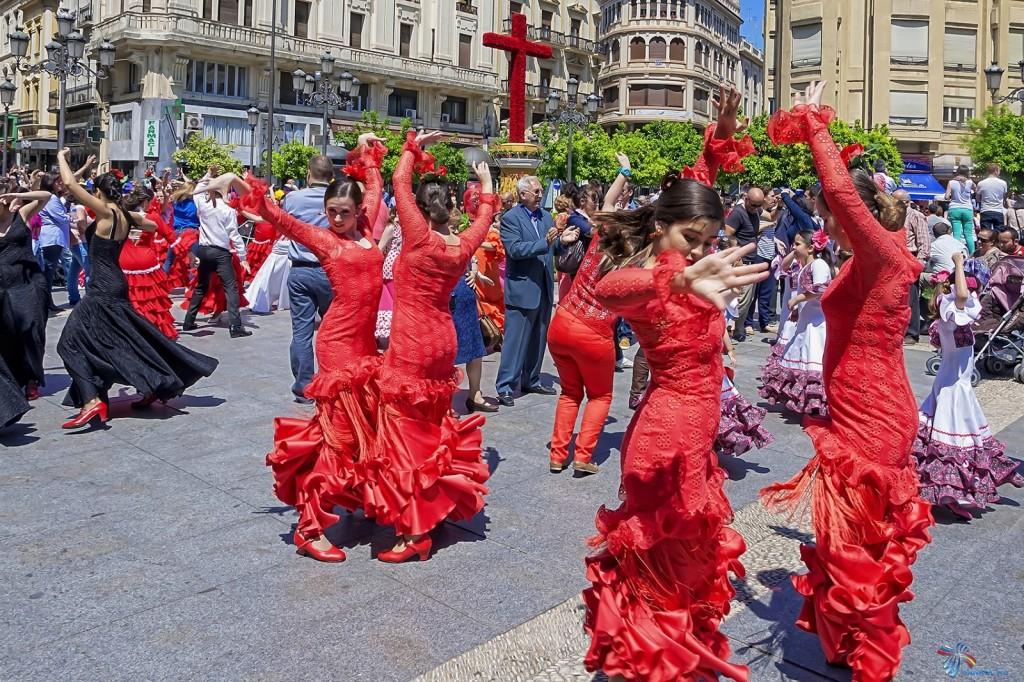 1401807467_flamenco-9