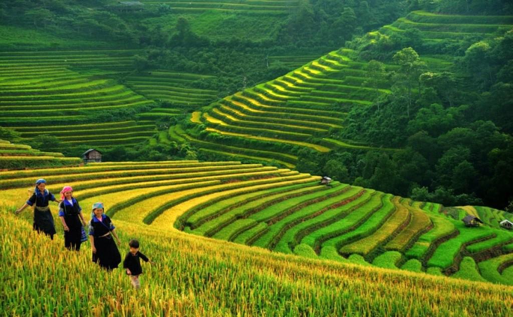 priroda vietnama