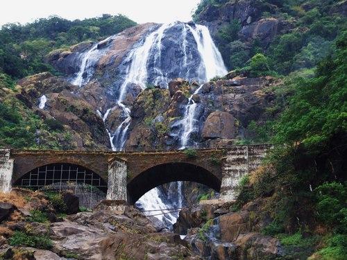 водопад дудхсадгар Гоа