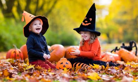 Halloween_Pumpkin_Little_501047_2560x1600